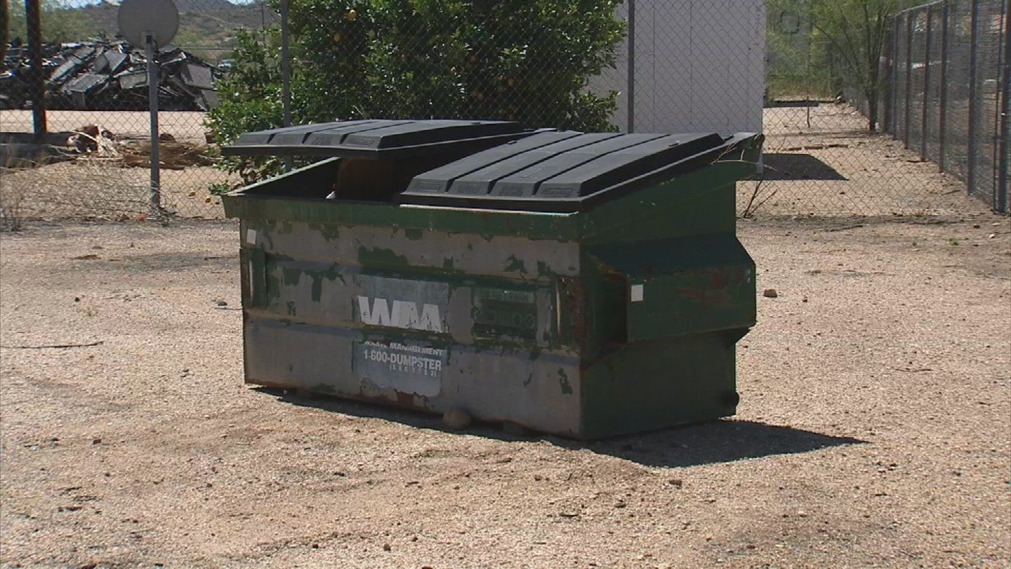 Britney Dempster thought she was being overcharged for this dumpster (Source: KPHO/KTVK)