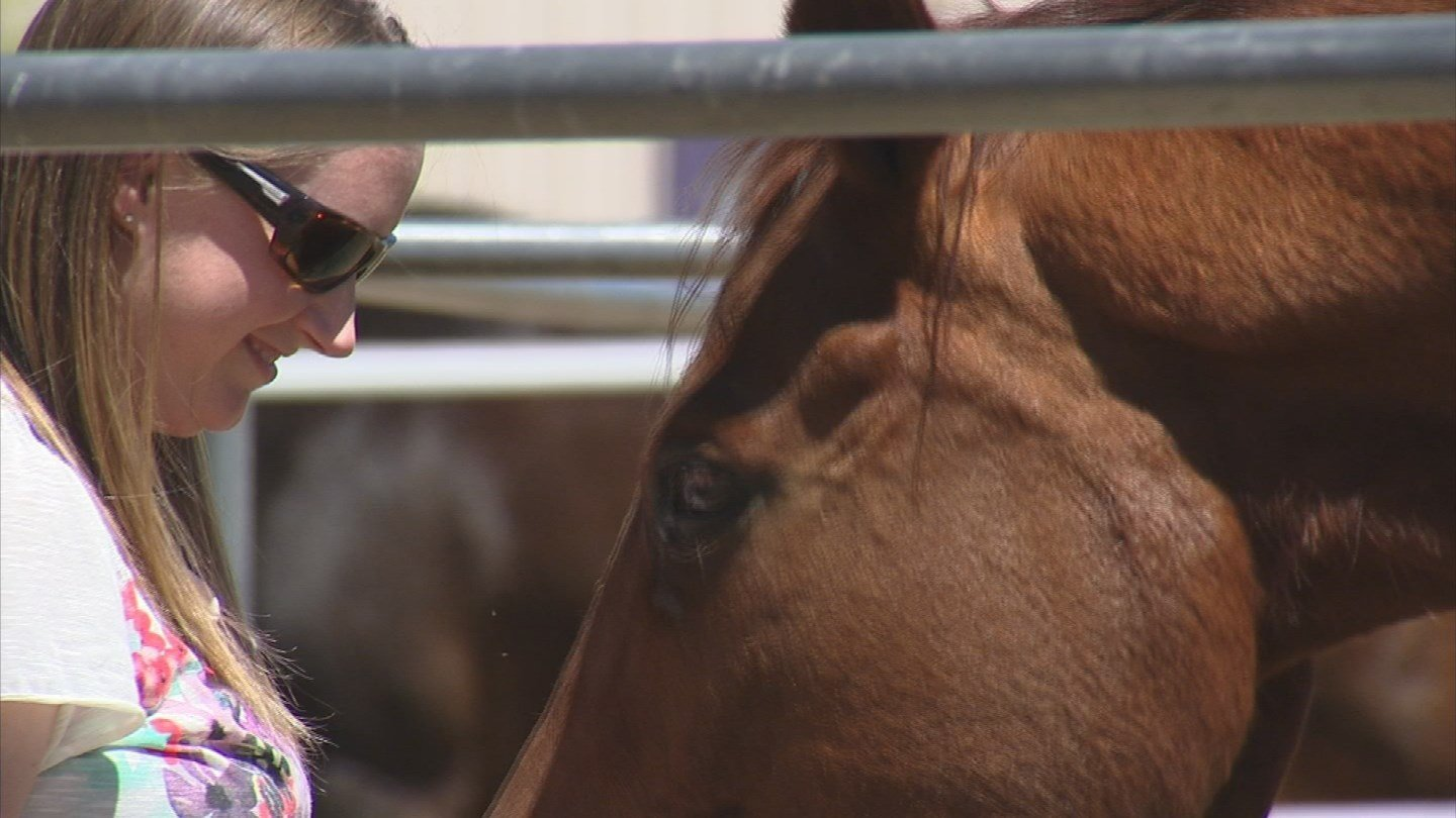 Dempster needed the dumpster to get rid of a lot of horse manure (Source: KPHO/KTVK)