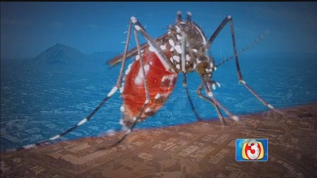 Mosquito season is fast approaching, and there's a new threat getting a lot of attention lately. Zika virus, responsible for birth defects in children, is spreading into Arizona, and our monsoon could increase the number of cases. (Source: 3TV)