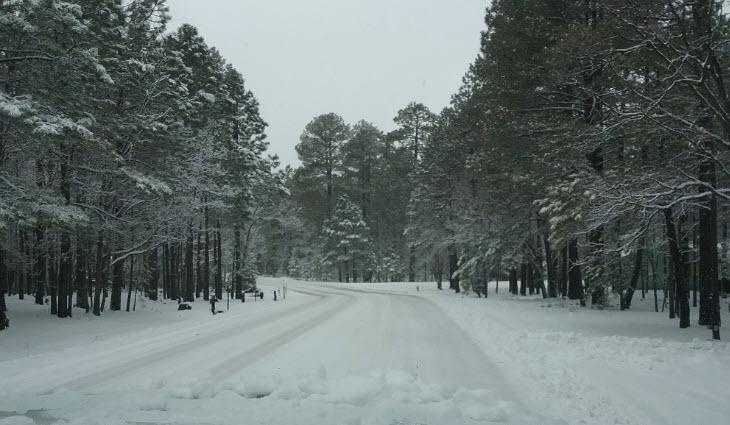 Flagstaff Snow (Source: 3TV/CBS 5)
