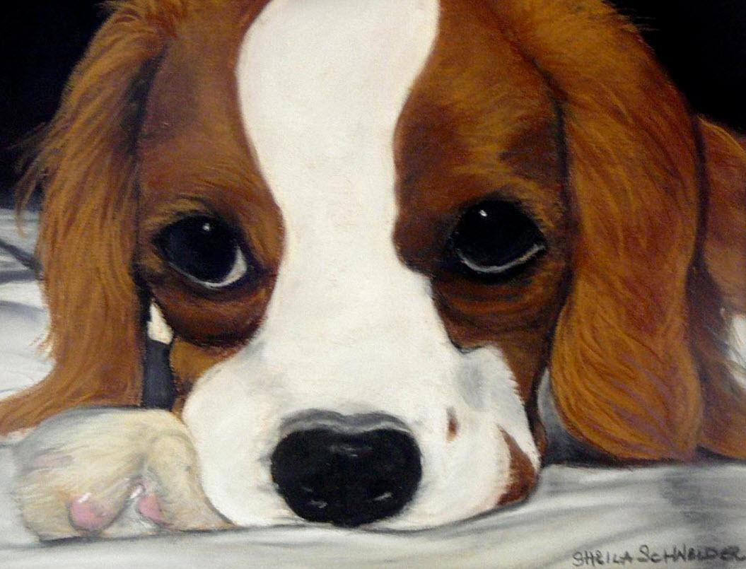 Art by Sheila Schneider (Source: Artists of Scottsdale Ranch)