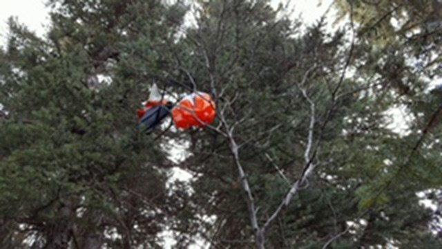 A hiker discovered it in the mountains west of Evergreen. (Source: Fort Huachuca)