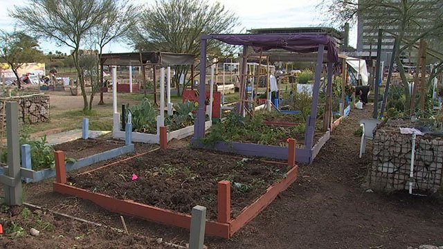 """Renews Garden"" at Central Avenue and Indian School Road  (Source: 3TV/CBS 5)"