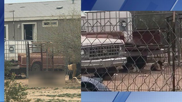 Two dogs were found dead at a Maricopa property on Monday. (Source: 3TV/CBS 5)