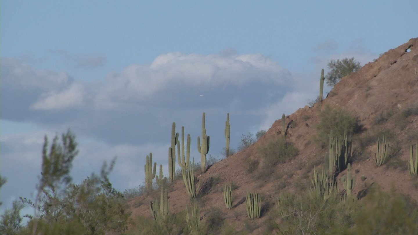 Here in Arizona, the state is home to more than 70 species that are endangered or threatened. (Source: 3TV/CBS 5)
