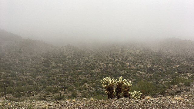 Fog and rain envelop South Mountain in Phoenix Sunday morning. (Source: Karla Navarrete, 3TV/CBS 5)