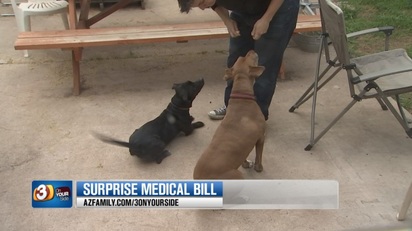 Wallinger's billing problem started after her two dogs got into a fight and she tried to split them up. (Source: 3TV/CBS 5)