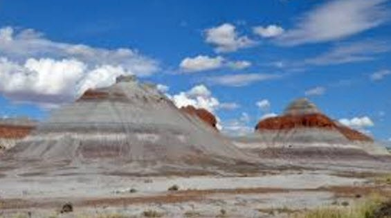 Petrified Forest National Park (Source: Wikipedia)