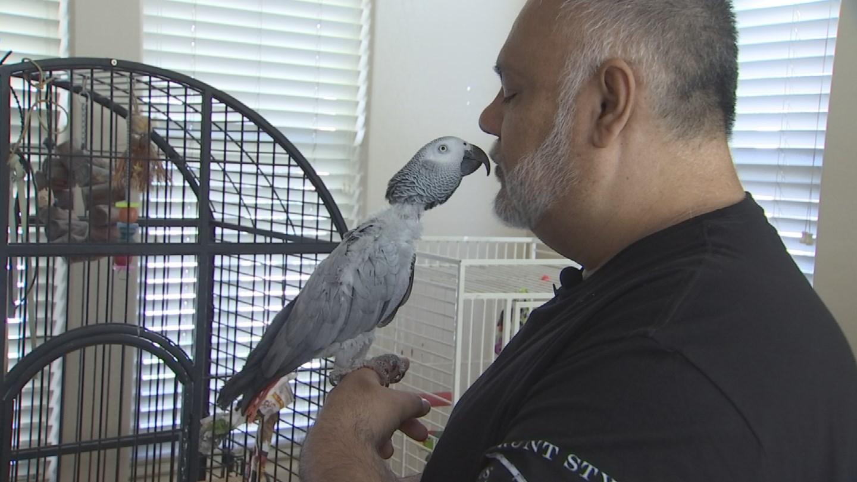 Ed Barrera loves his pet birds. (Source: 3TV/CBS 5)