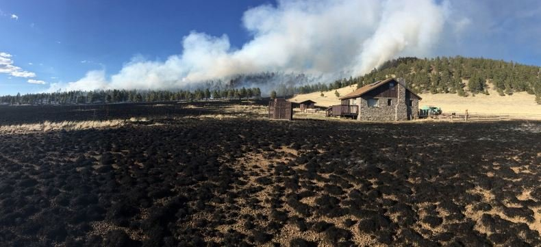 The Kendrick fire is thought to be human-caused.  Friday 17 March, 2017[Source: Coconino National Forest]