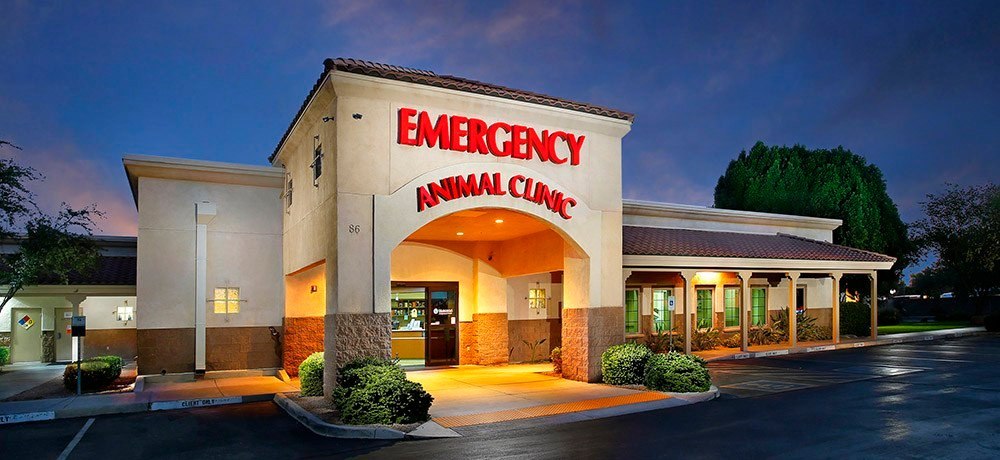 BluePearl emergency hospital in Gilbert (Source: BluePealrVet.com)