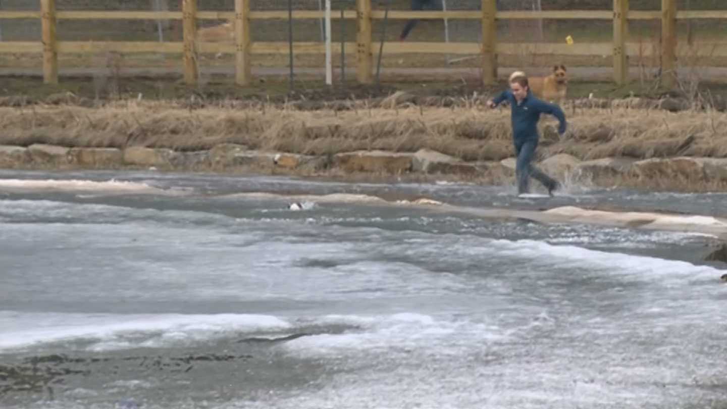 Man jumps into icy pond to save dog