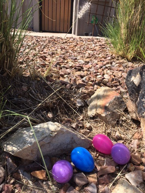 Valley moms will egg homes Easter weekend to raise money for bay's medical bills. (Source: 3TV/CBS 5)