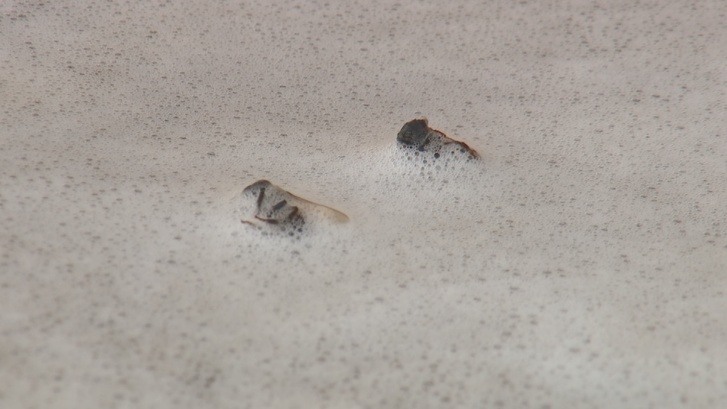 Firefighters used handlines filled with water and foam to fend off the bees while the two men were being treated. (Source: 3TV/CBS 5)