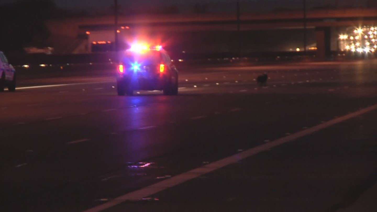 A stray dog forced DPS troopers to stop westbound traffic on the US 60 at Gilbert Road in Mesa on Wednesday morning. (Source: 3TV/CBS 5)