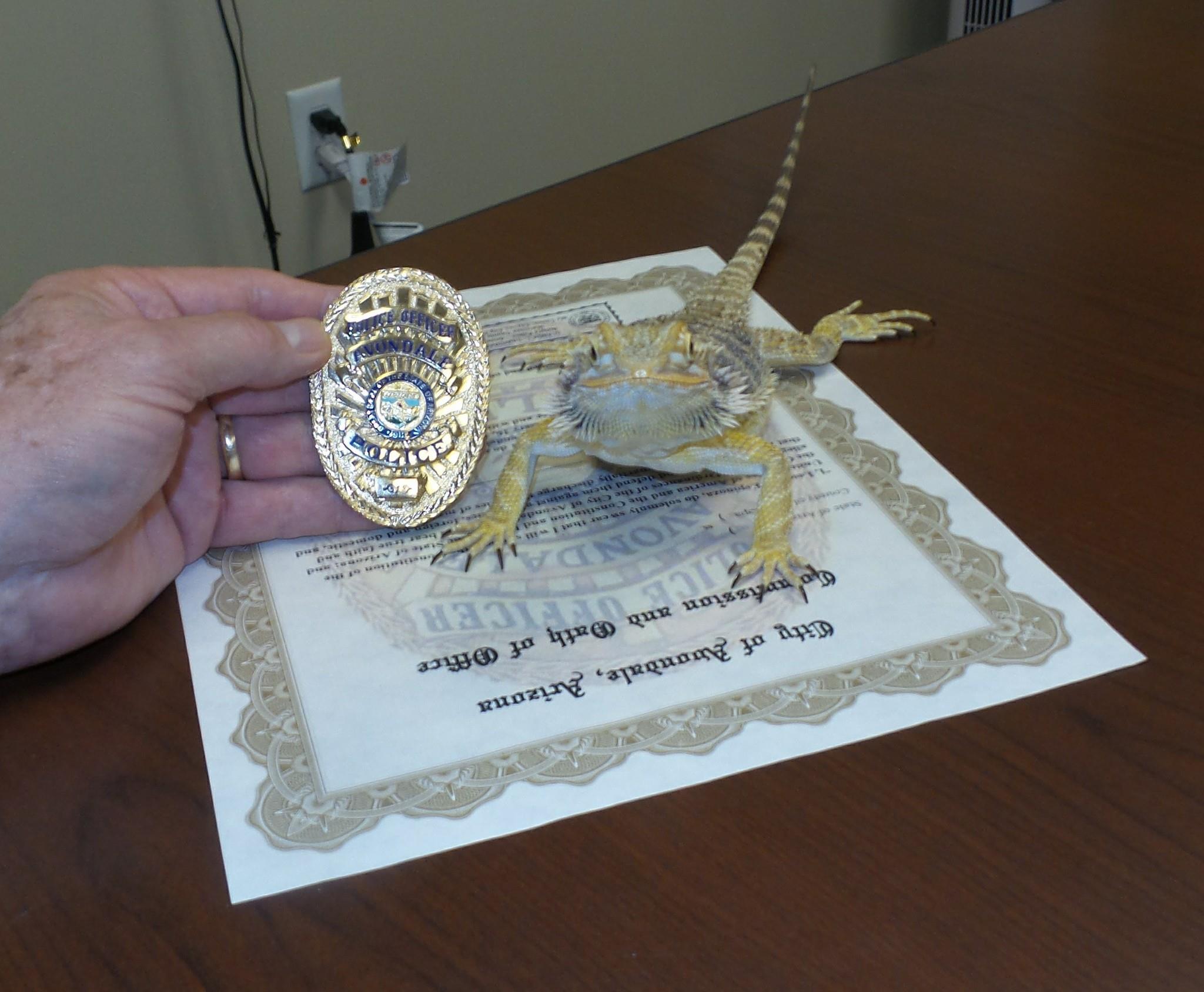 Serious but proud (Source: Avondale Police Department via Facebook)