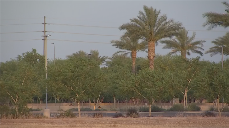 SRP is open to burying the lines if a developer or other entity will pay the added cost. (Source: 3TV/CBS 5)