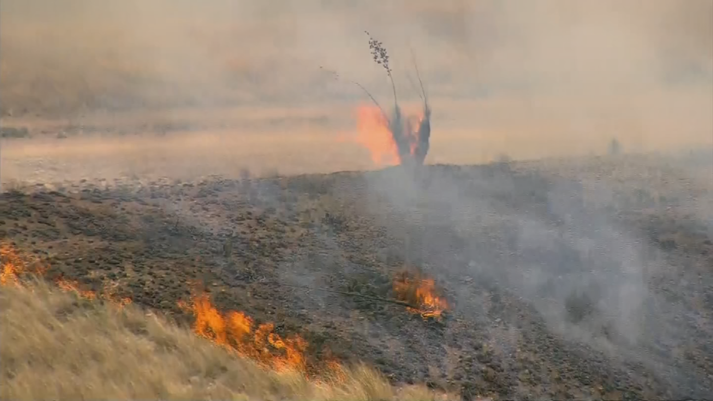The Sawmill Fire burned about 28 percent of the Las Cienegas National Conservation Area near Tucson. (Source: 3TV/CBS 5)