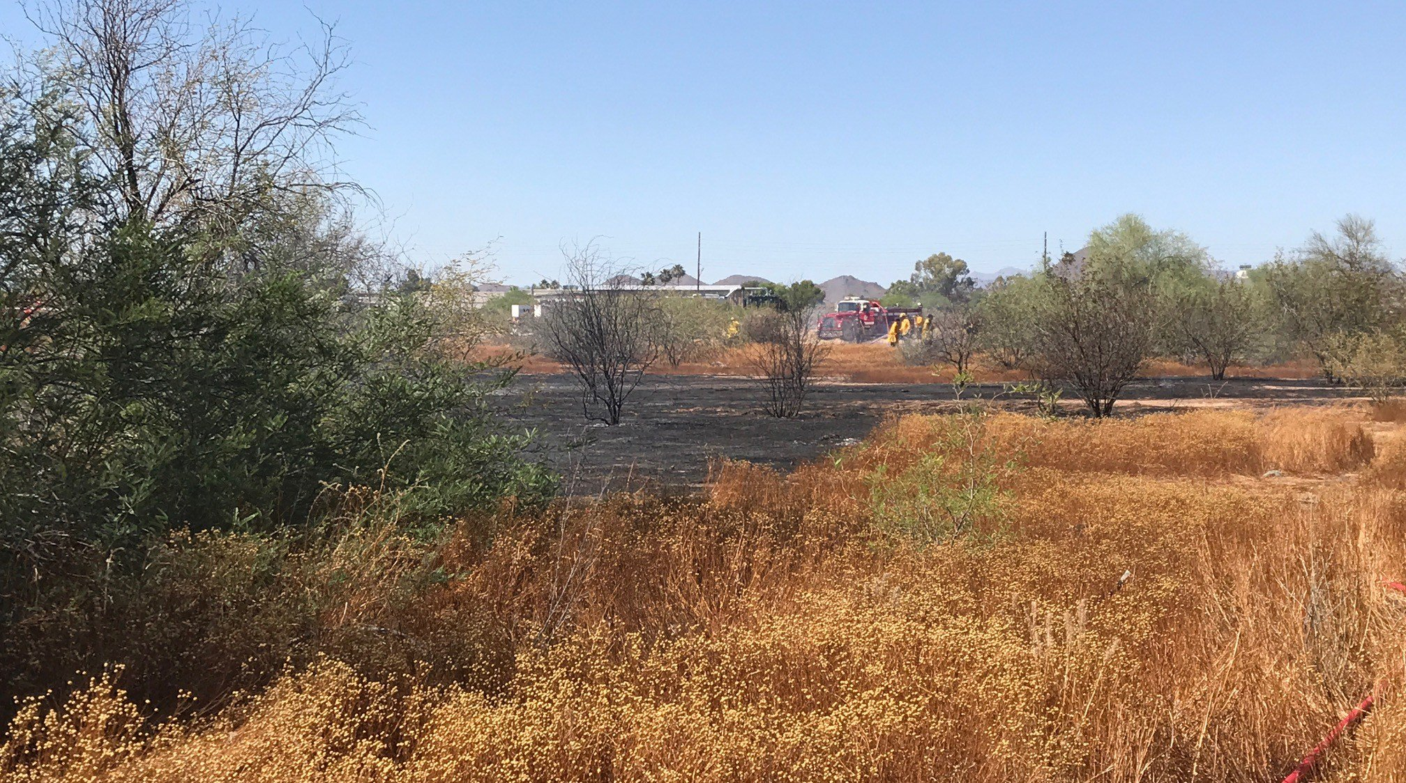 Firefighters battled a field fire in Phoenix Saturday afternoon. (Source: Phoenix Fire Department)
