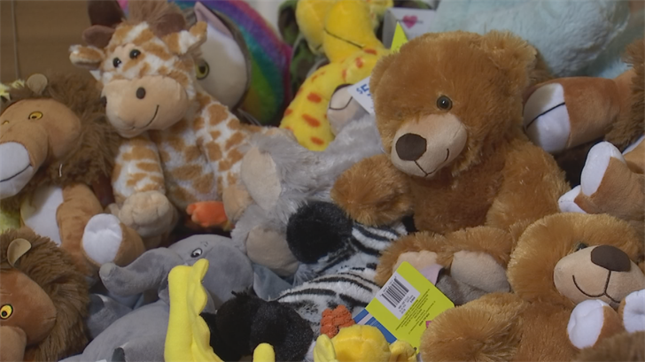 Eddy, 13, donated 108 stuffed animals to the Goodyear Fire Department. (Source: 3TV/CBS 5)