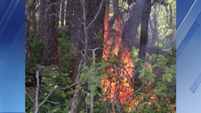 The Pinal Fire was started by lightning earlier this month. (Source: U.S. Forest Service)
