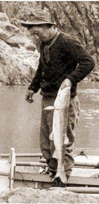 Pikeminnow, also known as the Desert Salmon, was caught in the Salt River. (Source: Arizona Game and Fish)