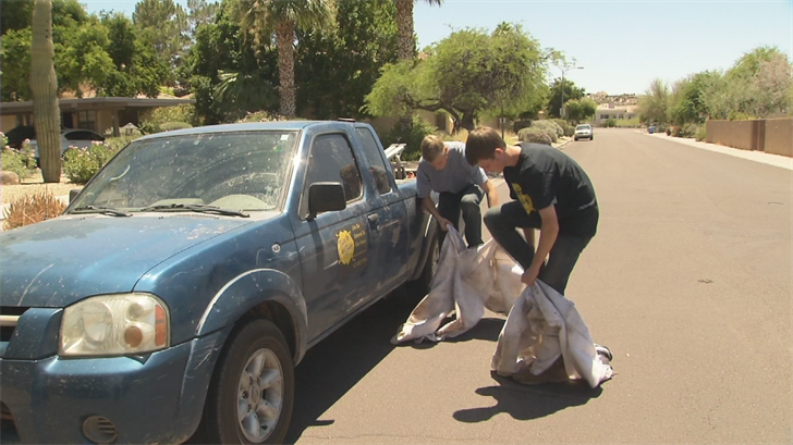 Beekeepers Alex and Jon Young, from Abello's Bee removal, pulled a hive from a house in Scottsdale Tuesday. (Source: 3TV/CBS 5)