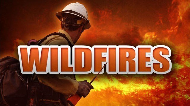 Fire personnel are managing a wildfire above Mogollon Rim. (Source: MGN Online)