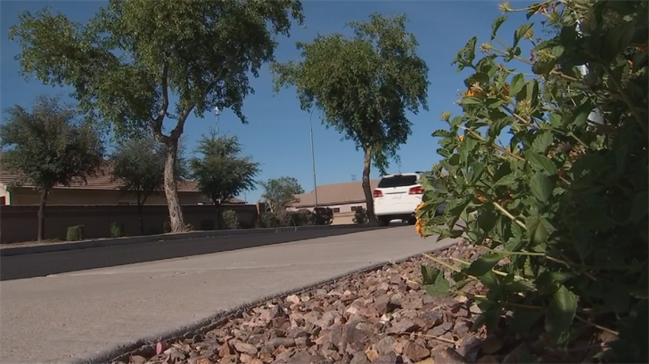 Police said a man was exposing himself to a girl in Avondale before a neighbor intervened. (Source: 3TV/CBS 5)