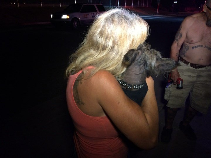 One of the dogs rescued reunited with their owner (SOURCE: 3TV / CBS 5)