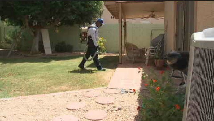 A pest elimination business is using garlic to keep mosquitoes away from houses. (Source: 3TV/CBS 5)