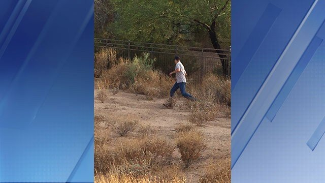 Officers and Arizona Game and Fish Department workers looked for the coyote in the park and behind an apartment complex. (Source: 3TV/CBS 5)