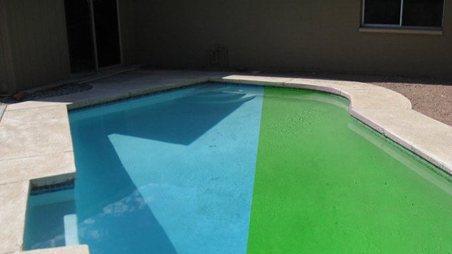 It takes a lot of work to keep a pool from going green. (Source: Leslie's Pool Supplies)
