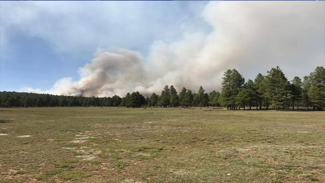 The Snake Ridge Fire continues to burn with low to moderate intensity. (Source: Coconino National Forest)