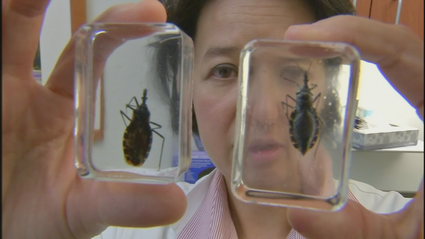 The Centers for Disease Control and Prevention estimates that there are 300,000 cases of Chagas in the U.S. with most of those contracted in other countries. (Source: 3TV/CBS 5)