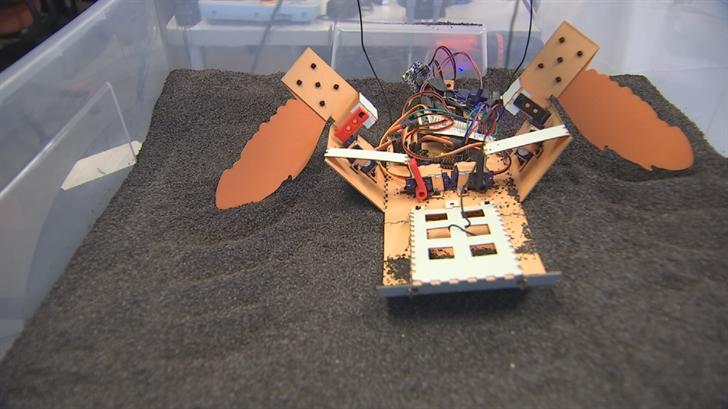 ASU Robotics students have developed a robot that mimics a sea turtle. (Source: 3TV/CBS 5)