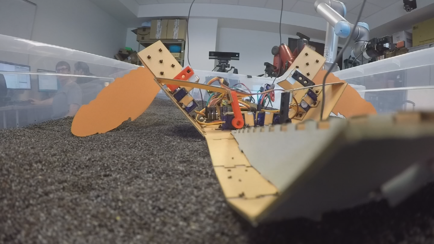 Early on, they found it could be a low-cost robot that can navigate and find land mines. (Source: 3TV/CBS 5)
