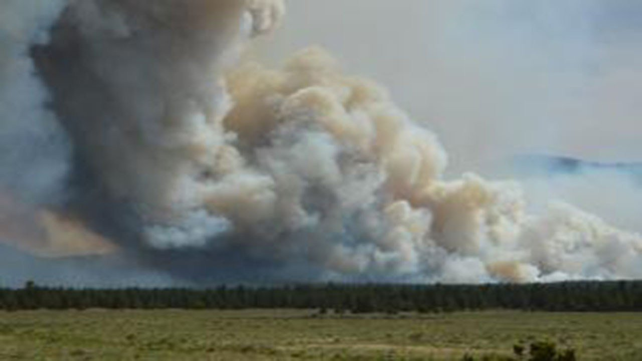 Boundary Fire near Flagstaff. (Source: Kaibab National Forest)