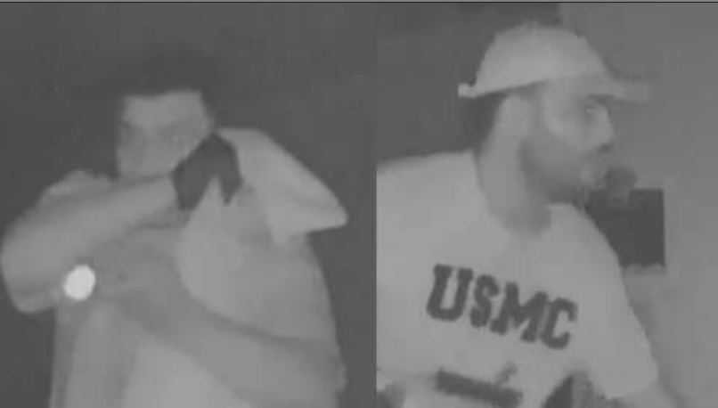 Thompson's canary security camera captured the pair of bandits as they rummaged through her living room Friday night. (Source: Home security camera)