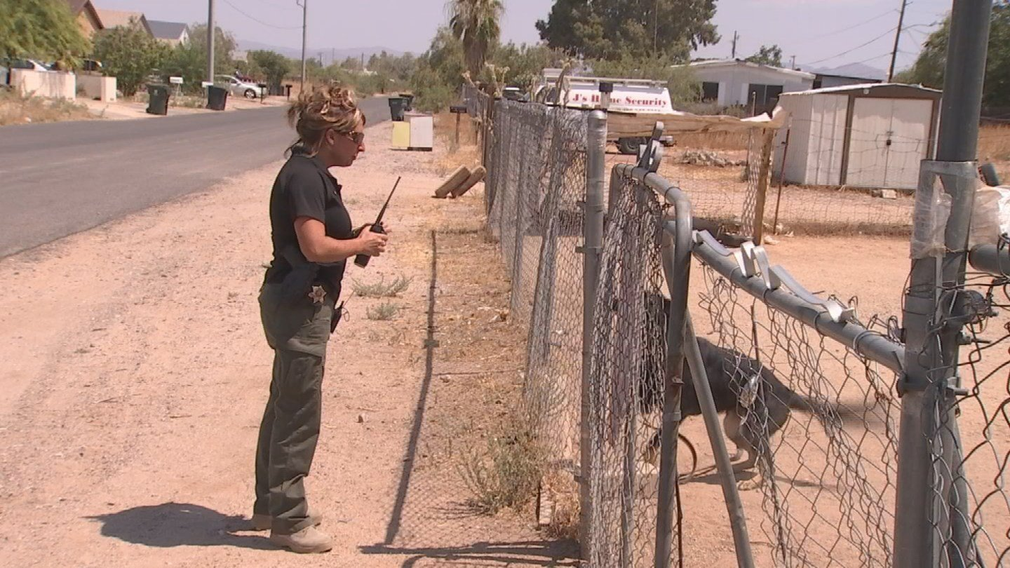 Det. Dee Daniel with MCSO checks on a dog in the heat. (Source: 3TV/CBS 5)