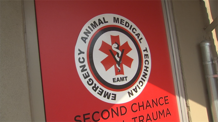 At the Humane Society's Second Chance Animal Trauma Hospital, veterinarians have treated several animals for heat-related issues in recent days. (Source: 3TV/CBS 5)