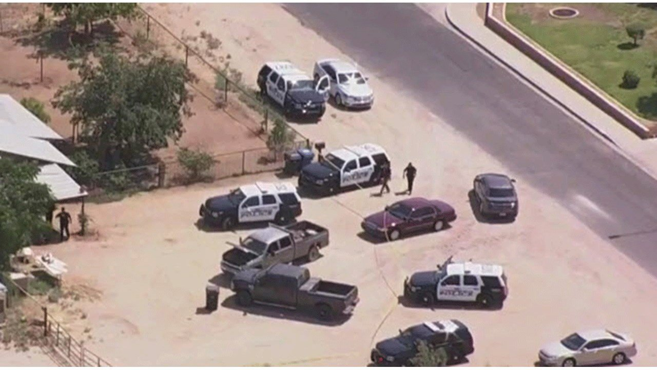 A man was shot after approaching Mesa police officers aggressively with a stick in east Mesa Wednesday afternoon. (Source: 3TV/CBS 5)
