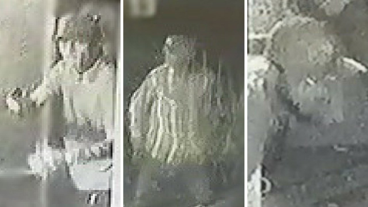Surveillance images of the three suspects in an attempted armed robbery in Phoenix (Source: Silent Witness)