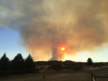 Fire crews said the fire is burning through mostly dense chaparral that are more than 40 years old. (Source: Viewer)