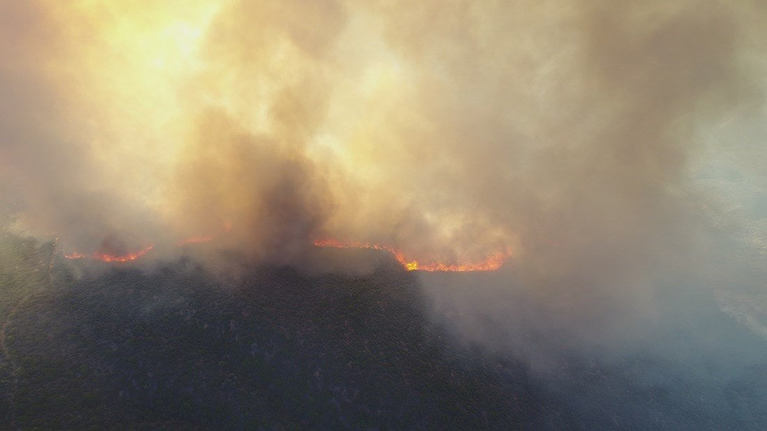Photo of Goodwin Fire taken from Carpenter's website