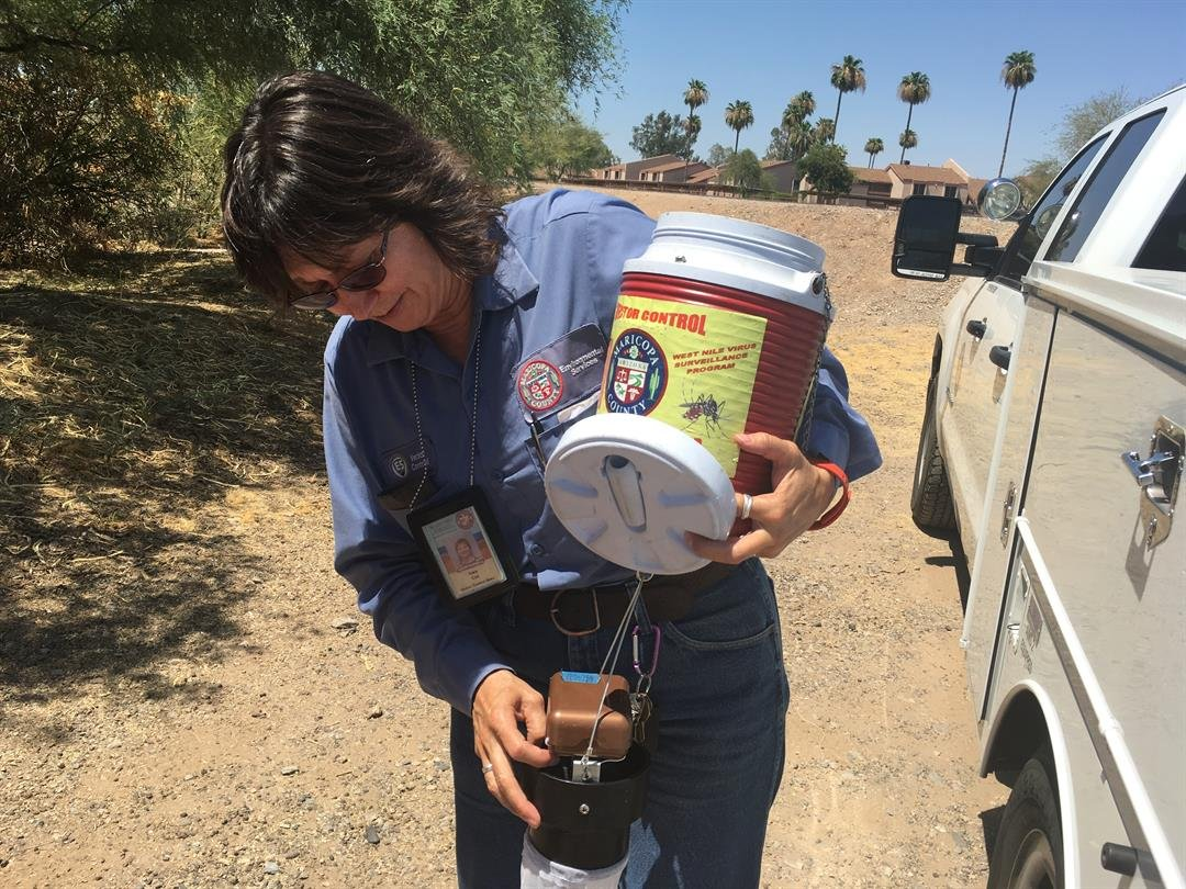 Kara Cox, a vector control specialist with the county, says mosquitoes breed in standing water. That's why it's important for people to hunt and remove anything in their yard that can collect water. (Source: 3TV/CBS 5)