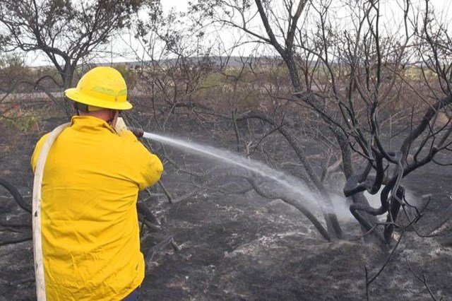 Daisy Mountain Fire Dept. firefighter putting water on a hot spot at the Brooklyn Complex fire. (10 July 2017) [Source: BLM]