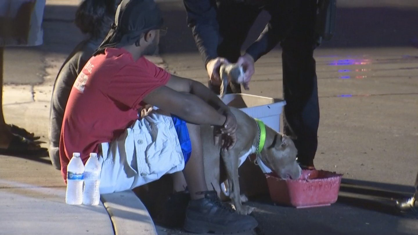 Although the family got out safe, they had real concern for the two dogs and eight puppies, who were still trapped inside. (Source: 3TV/CBS 5)