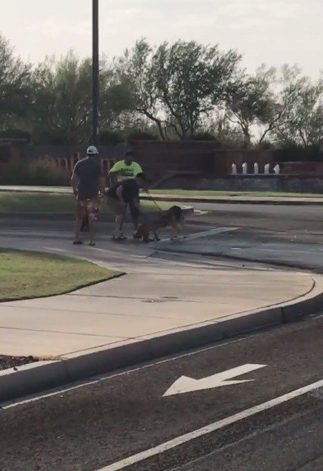A man and a dog were on a walk when the attack happened. (Source: Daisy Mountain Fire Department)