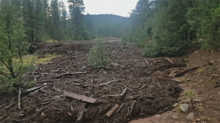 Ken Maki recorded a flash flood near Payson on his cell phone. (Source: 3TV/CBS 5)